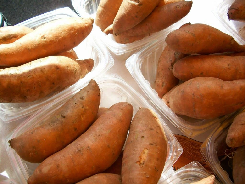 Sweet Potatoes In Containers